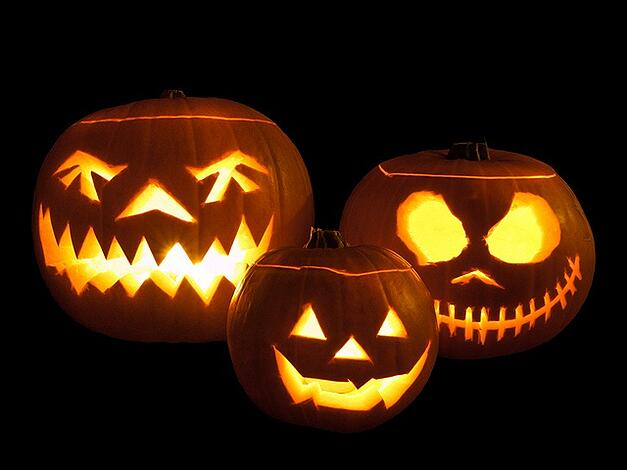Accounts Payable Process Facts are scarier than these pumpkins!